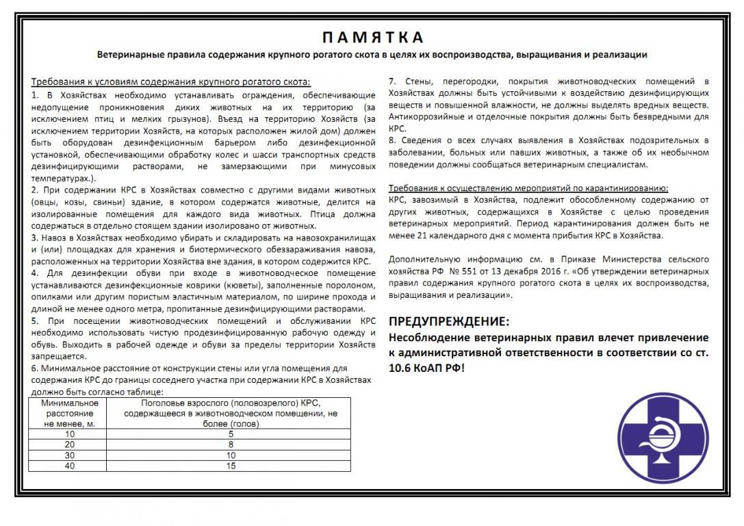Субъектам РФ выделят деньги для создания групп по присмотру за маленькими детьми 87